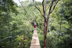 Artisan, historic routes, handcraft and canopy tours - Los Santos, Panama