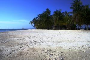 Bidirdub Island San Blas