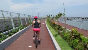 Cinta Costera (Coastal Strip) - New Phase