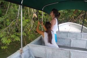 From Panama City: Panama Canal and Monkey Island Tour