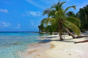 Isla Mamey