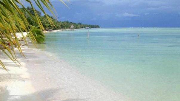 Las Estrellas Beach (Bocas del Toro)