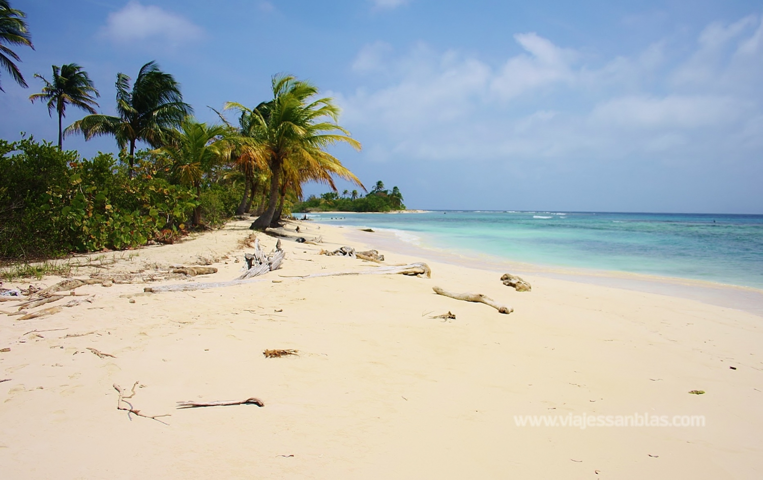 Best Paradise Islands in Panama
