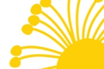 Mimosa Spa Retreat