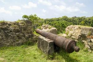 Panama Canal, Colón Rainforest and San Lorenzo Fort