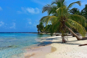 Panama City: Contadora Island Day Trip with Lunch