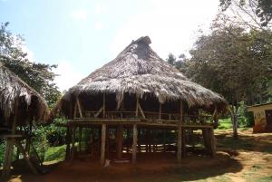 Panama City: Embera Indigenous Village Experience