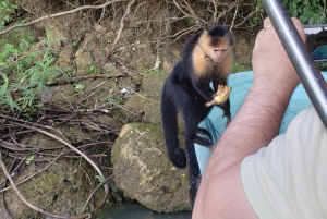 Panama City: Jungle & Gatun Safari Tour on the Panama Canal
