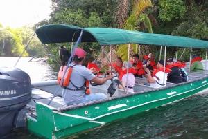Panama City: Monkey Island and Indigenous Village Tour