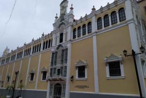 Panama City: Small-Group Miraflores Locks and City Tour