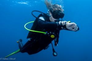 Panama Dive Center