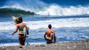 Panama Surf Tours