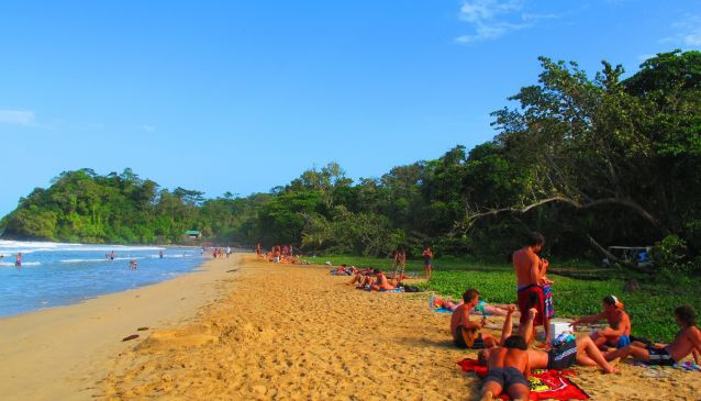 Red Frog Beach Island Resort Certified For Its: Red Frog Beach In Panama