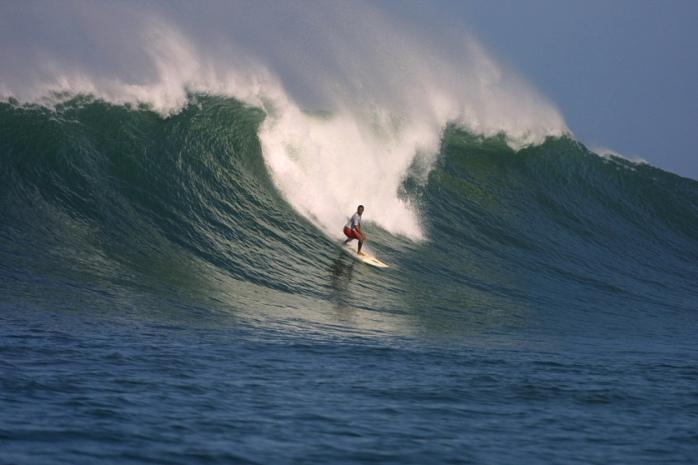 Surf experiace in Santa Catalina