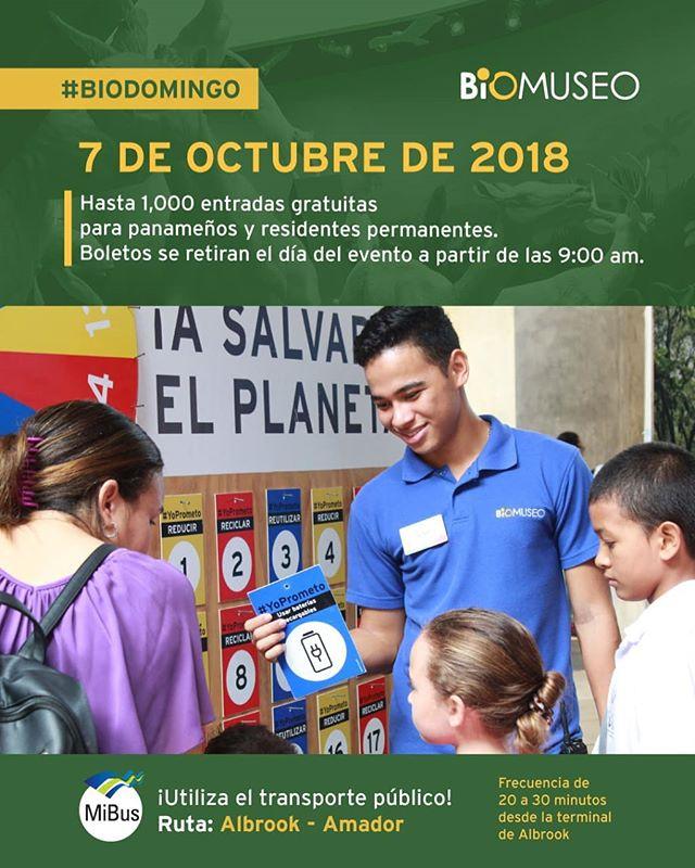 UTILIZA EL TRANSPORTE PUBLICO