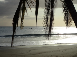 Surf Break Experience in Playa Morrillio