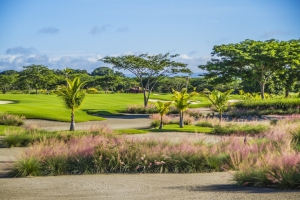 The PGA Tour Latin America