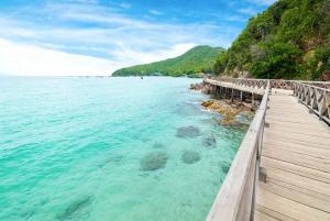 Day Trip to Pattaya City & Koh Larn Island Tour From Bangkok