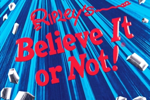 Pattaya: Ripley's Believe It or Not! Combo Admission Ticket