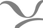 PES Network Ltd