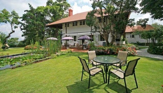 David Brown's Restaurant and Tea Terraces