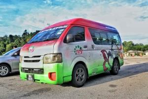 Penang: Private Airport Transfer by Car or Van