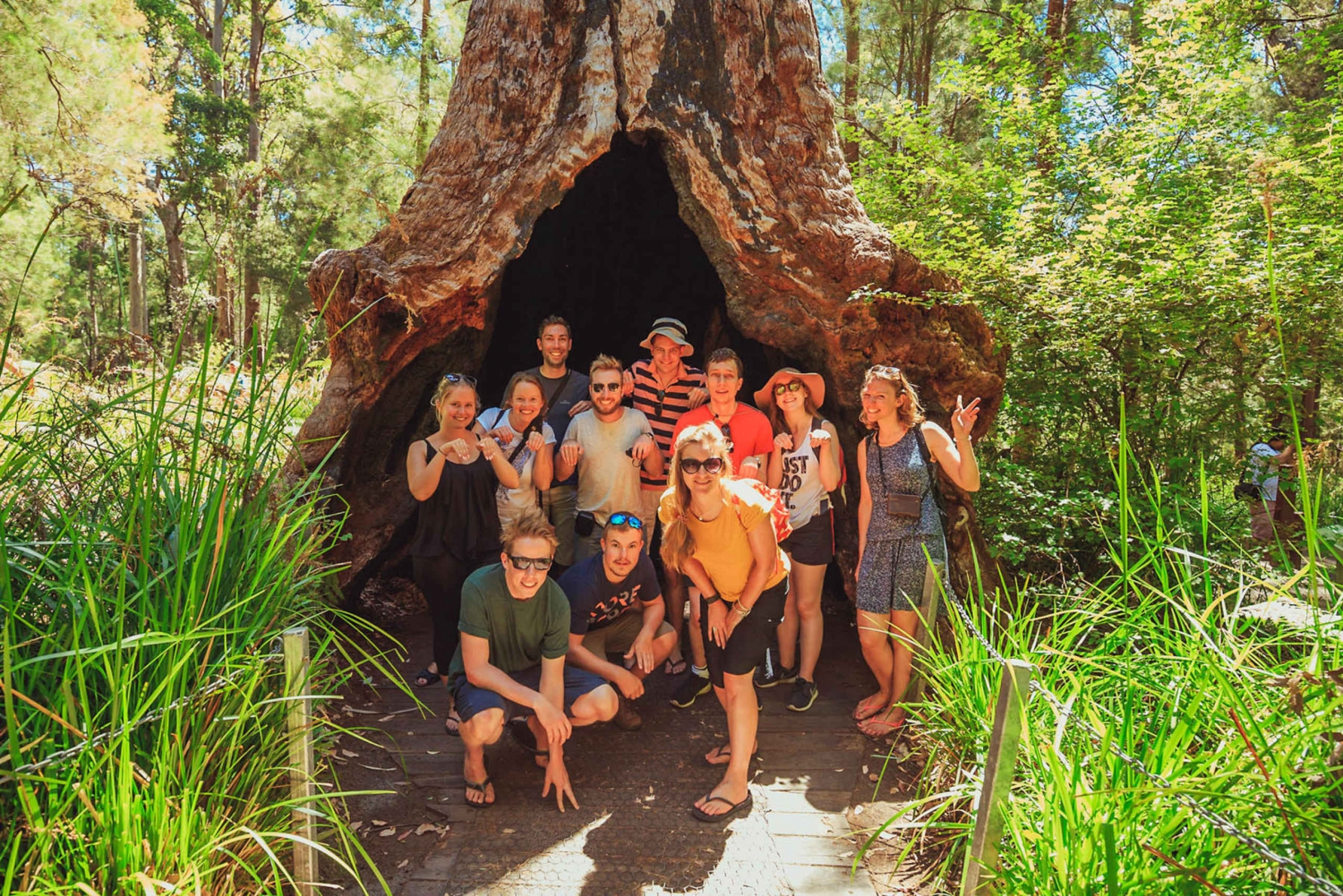3 Day Discovery Tour Margaret River, Albany, Walpole