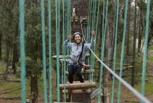Busselton: 2-Hour High Ropes Course