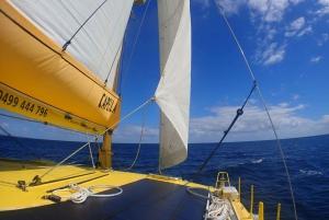 Carnac Island: Catamaran Sailing in a Class A Nature Reserve