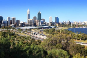 City Highlights, Wildlife Park and Swan Valley Tour
