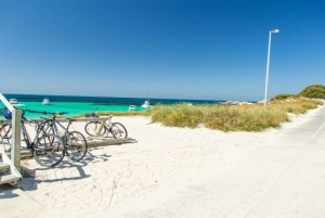 From Fremantle: Rottnest Ferry & Bike Hire Package