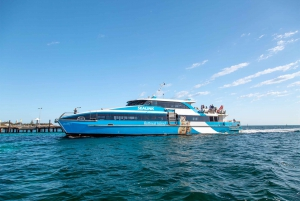 From Fremantle: Rottnest Island Ferry, Snorkel and Bike Hire