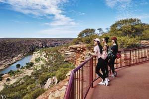 From Perth: 4-Day Coastal Loop to Monkey Mia