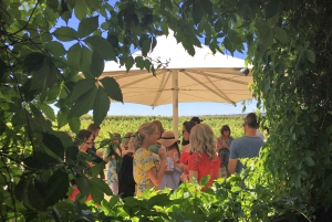 From Perth: River Cruise to Swan Valley & Vineyard Tour