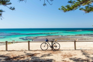 From Perth: Rottnest Bike and Ferry Package