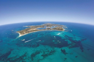 From Perth: Rottnest Island Ferry & Admission