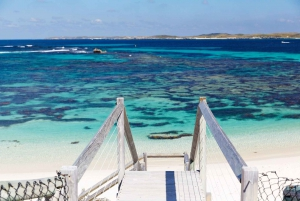 From Rottnest Bike and Ferry Package