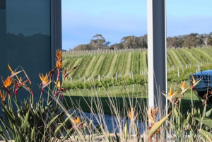 Half day Wine and Sights Discovery Tour Busselton