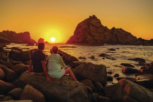 Margaret River Highlights Tour with Wine and Cheese