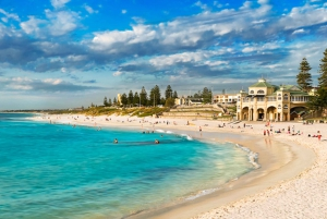Perth: City Highlights, Wildlife Park and Swan Valley Tour