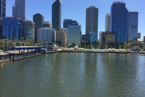 Perth: Full-Day Discovery Tour
