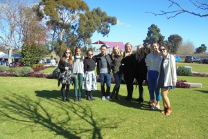Perth: Full Day Swan Valley Cruise & Wine Tasting With Lunch