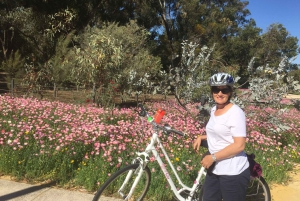 Perth: Guided Bike Tour around Matilda Bay and Kings Park