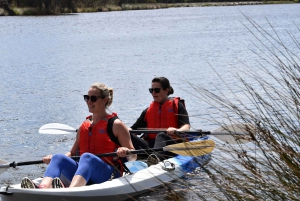 Perth: Guided Kayak Tour around Canning River Wetlands