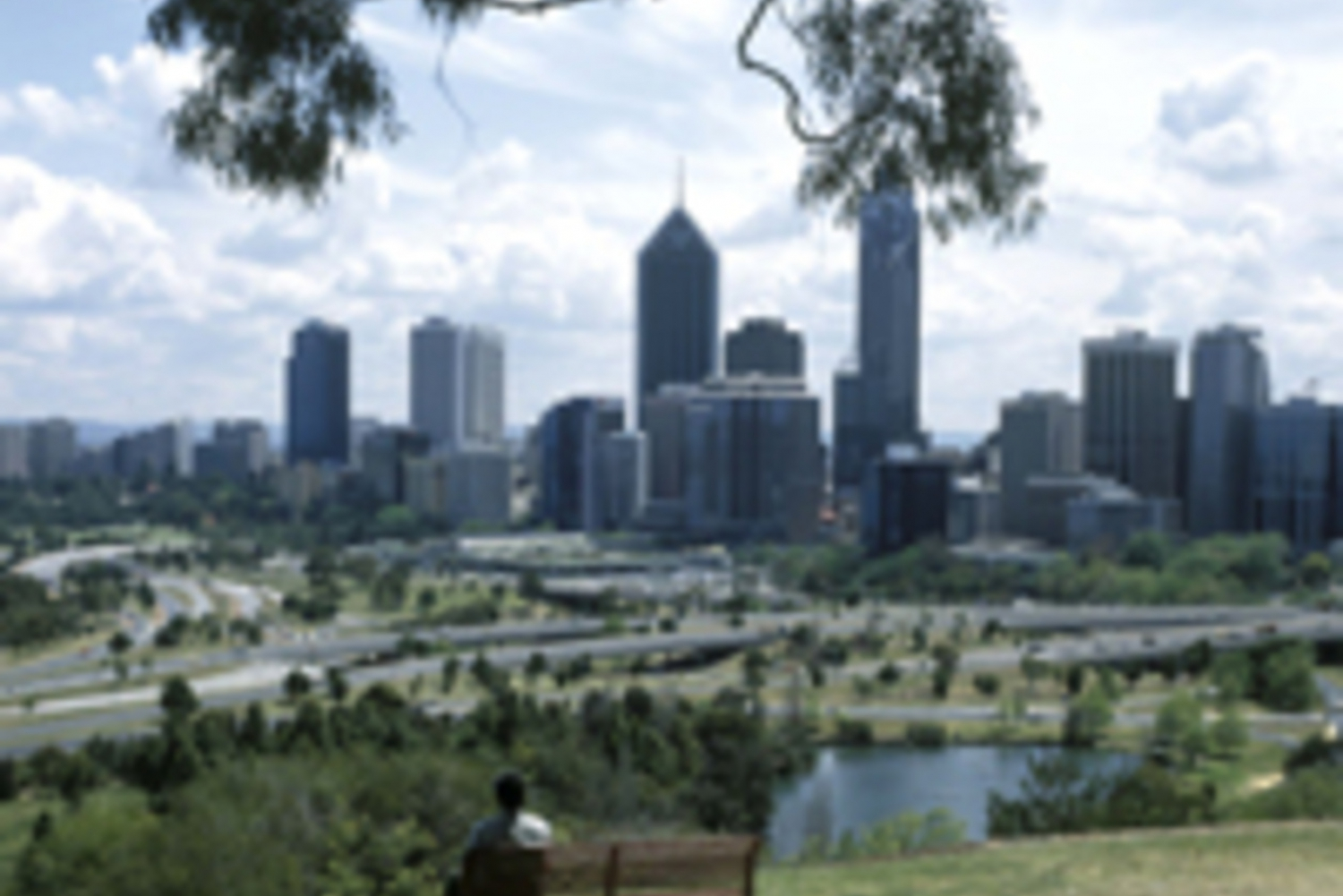 Perth Highlights Half-Day Tour and Fremantle Visit