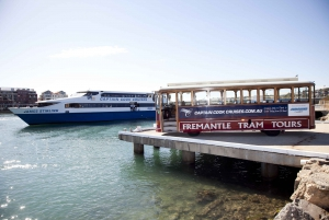 Perth Hop-on Hop-off Bus, Lunch Cruise & Fremantle Tram Tour