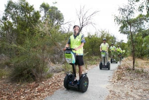 Perth Segway 1.5 Hour Kings Park Tour