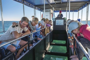 Perth to Exmouth 5-Day Coral Coaster One-Way Journey