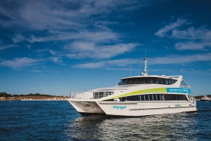 Perth: Whale Watching Cruise from Hillarys Boat Harbor