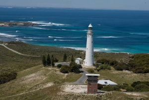 Rottnest Island Ferry & Bus Tour from Perth or Fremantle